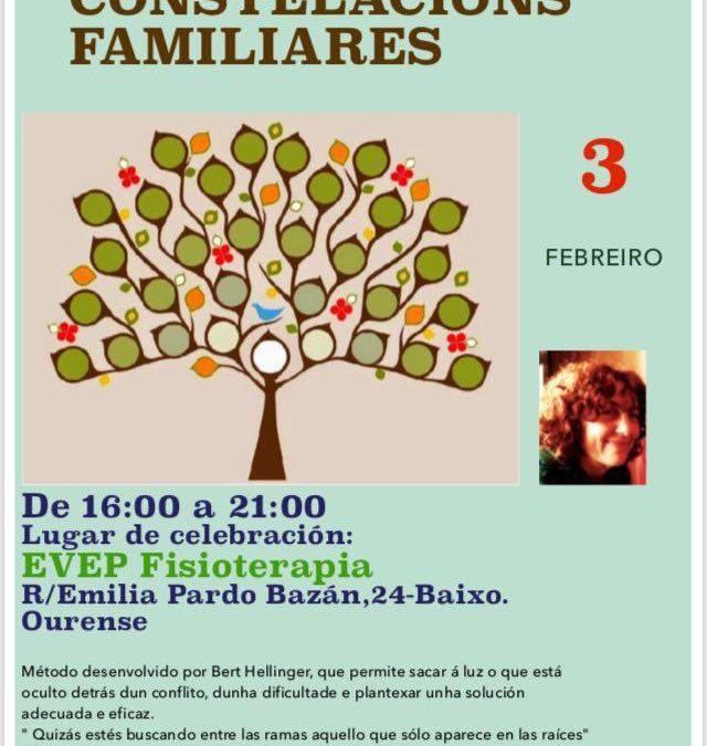 Taller de constelaciones familiares (03/02/2018).